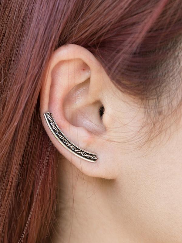 Aquaduct Ear Climbers